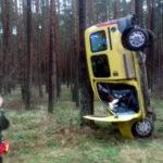 """""""Kangur"""" na drzewie – nietypowy wypadek pod Gorzowem"""