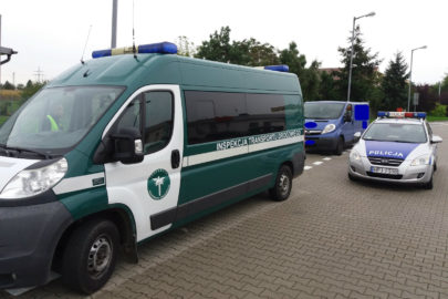 Miał wieźć Oplem Vivaro pasażerów do Holandii – miał 1,36 promila