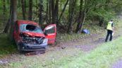 Na DK 19 kierujący Mercedesem Citanem śmiertelnie potrącił pieszego