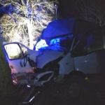 Pijany 19-latek wjechał busem w drzewo – pasażer zmarł na miejscu