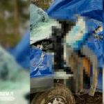 Na DW 163 Fiat Ducato wypadł z drogi – kierowca zmarł