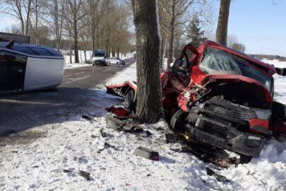Iveco Daily uderzyło w drzewo – kierowca autolawety w szpitalu
