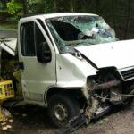 Na DK 15 Fiat Ducato uderzył w dzika a potem wpadł w drzewo