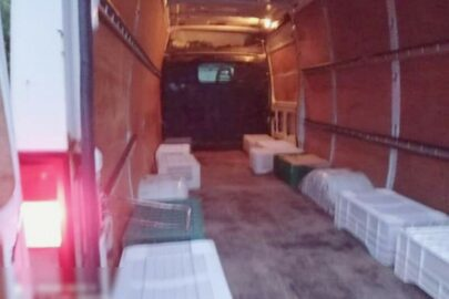 29 osób w ładowni Iveco Daily – kierowcy zatrzymano uprawnienia